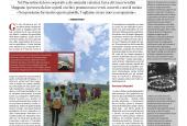 BUONENOTIZIE NAZIONALE2019 05 28 Page5